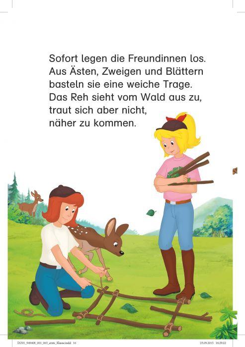 Bibi Tina Sammelband Pferde Satteln Fertig Los Erstlesen 12klasse