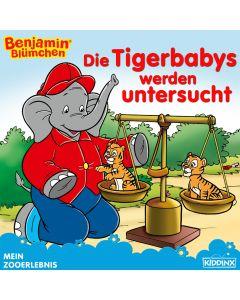 Benjamin Blümchen: Die Tigerbabys werden untersucht