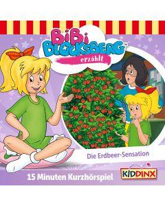 Bibi Blocksberg: erzählt Sensationsgeschichten (Folge 11.3)